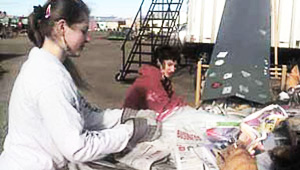 Collection and Recycling of Newspapers